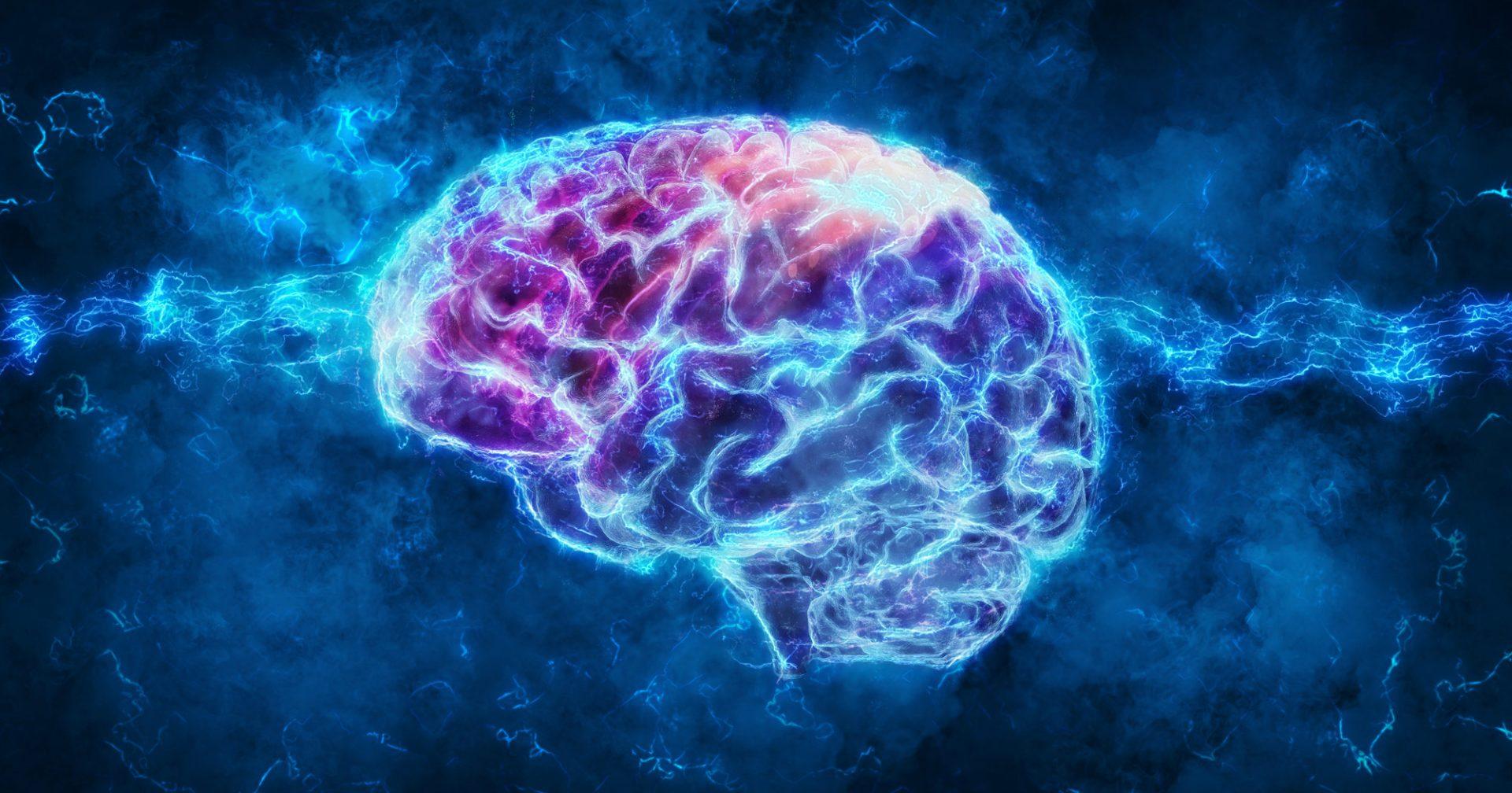 JICC2021 - Jornada Intedisciplinaria de Ciencias Cognitivas